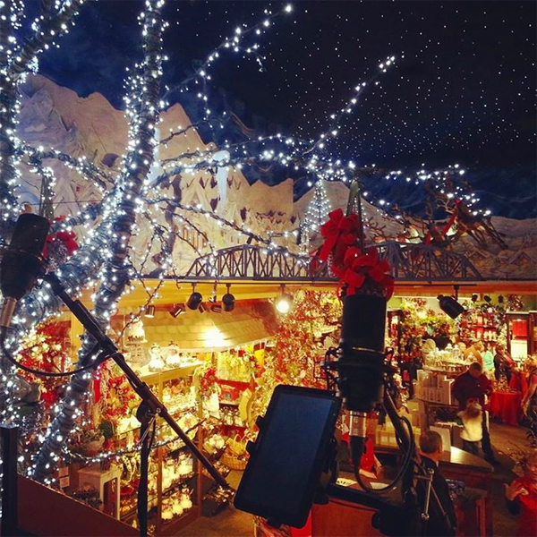 Pea Pickin' Hearts' stage View at Christmas Place!