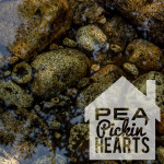 Host a House Concert with the Pea Pickin' Hearts!