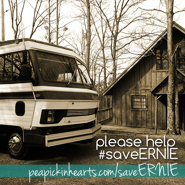 Please help the Pea Pickin' Hearts #saveERNIE the #retroRV!
